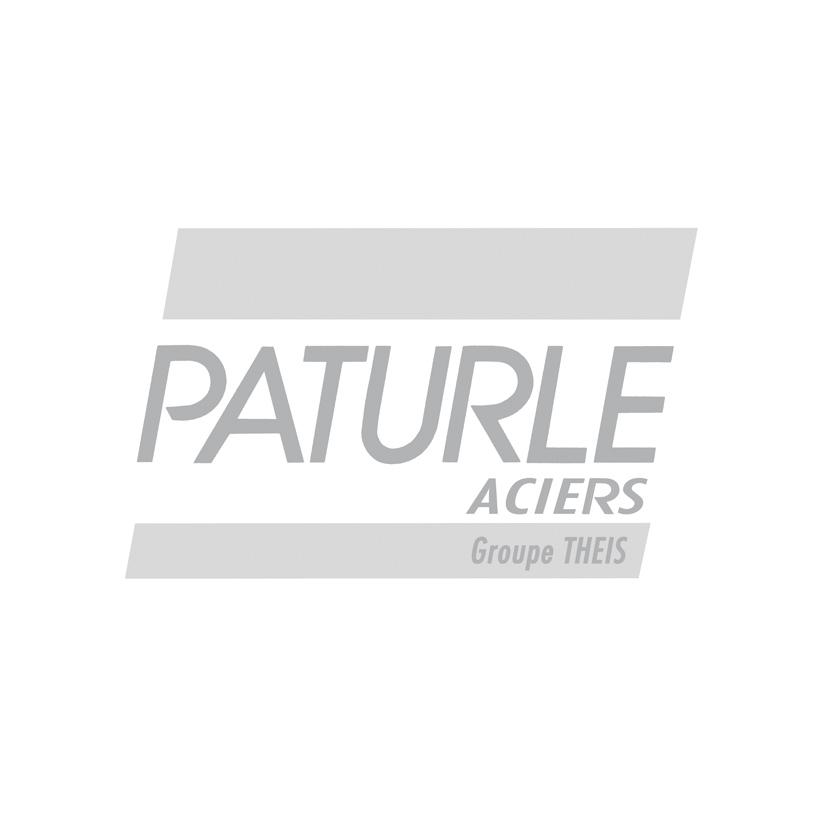 logo Paturle Aciers